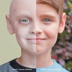 سالم زندگی کردن خطر ابتلا به سرطان را کاهش میدهد